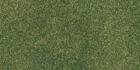 RG5142 Woodland Scenics Ready Grass Vinyl Mat Green Grass Project Sheet 14.5in x 12.55in