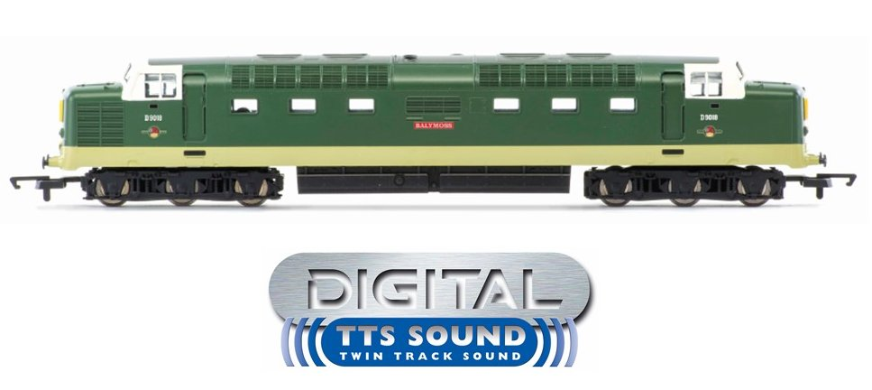 "R30048TTS Hornby Railroad Plus Class 55 Deltic Diesel number D9018 ""Ballymoss"" in BR Green livery with Late Crest - Era 6"